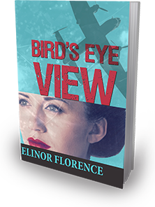 Birds Eye View cover