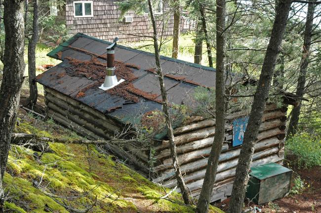 log cabin before restoration, roof