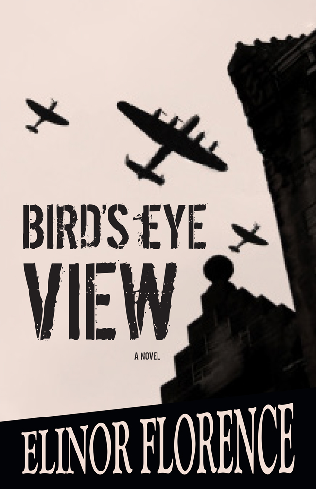 Bird's Eye View book cover design proof