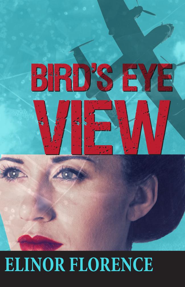 Bird's Eye View book cover design