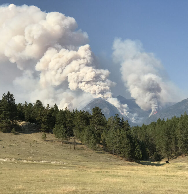 Forest Fire at Wasa, B.C. July 2021
